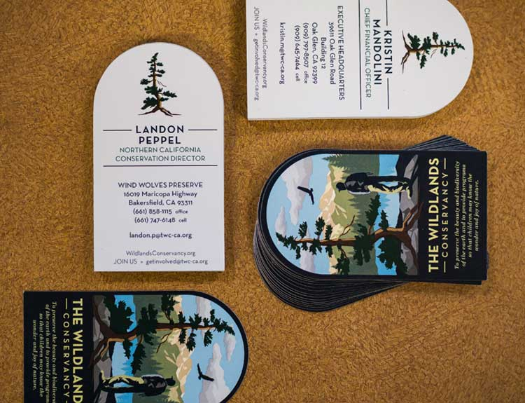 Die Cut Business Card Finishing